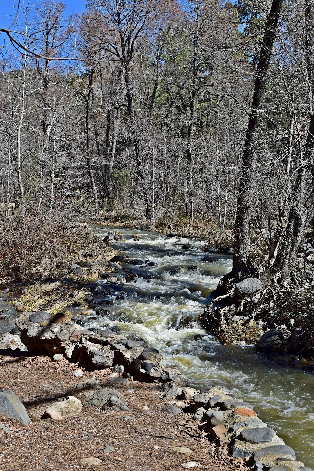 Pine Flat Campground   Recreation Resource Management